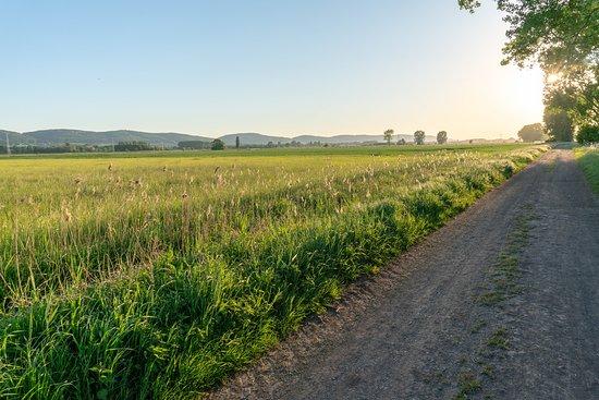 Naturschutzgebiet Bastauwiesen