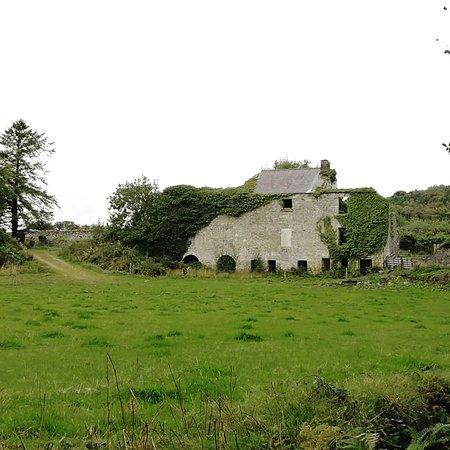Stranorlar, Irland: IMG_20180831_161324_064_large.jpg
