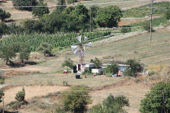 Lassithi Plateau: Windmühle