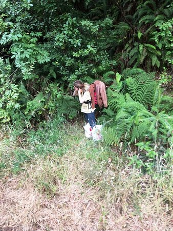 Backpacker along the route