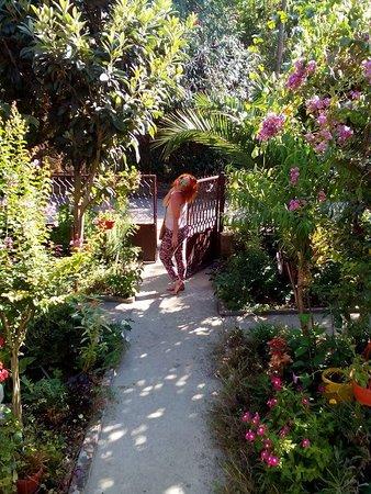Donji Stoj, Montenegro: Villa Duda Rooms Garden
