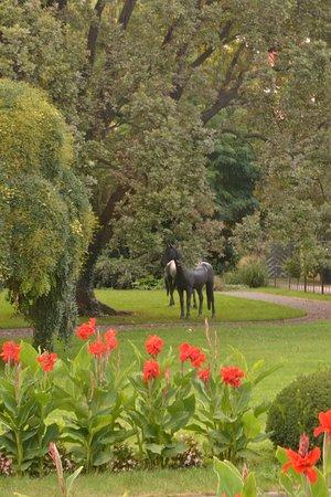 Horse Statues In Garden   Picture Of The Gardens Below Prague Castle,  Prague   TripAdvisor