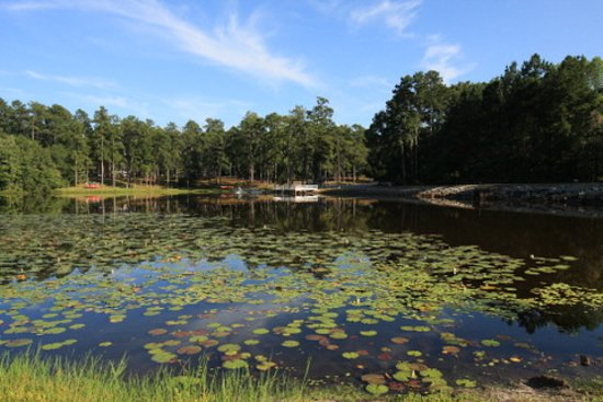 Magnolia Springs Park: There are cottages you can rent around this area.