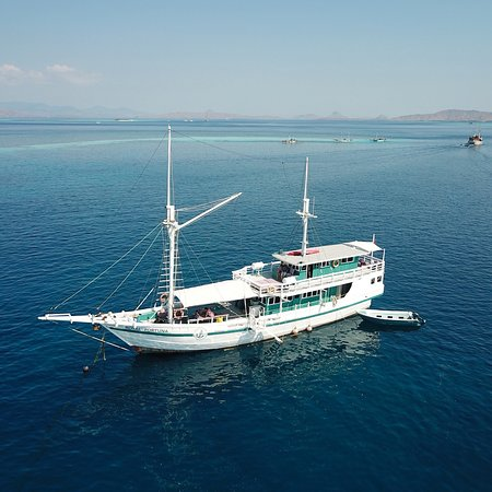 Royal Fortuna Cruises