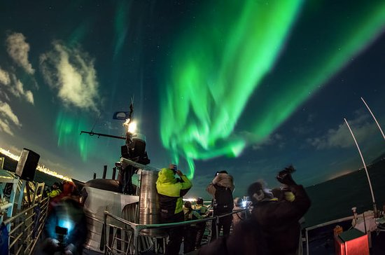 Northern Lights Cruise fra Reykjavik