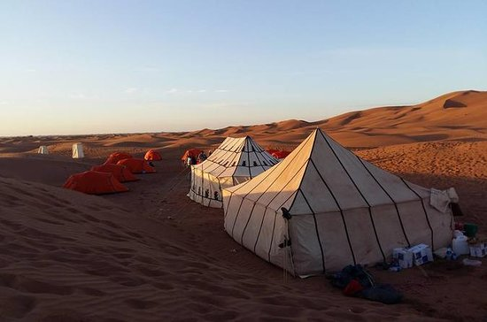 2-Day Shared Group Desert Tour from...