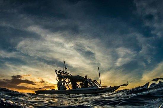 Kona Private Boat Charter