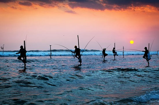 Galle Day Tour com Stilt Fishing...