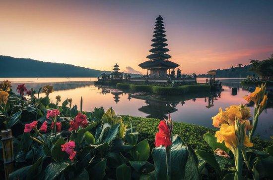 Private 3-Tage-Tour-Paket: Bali...