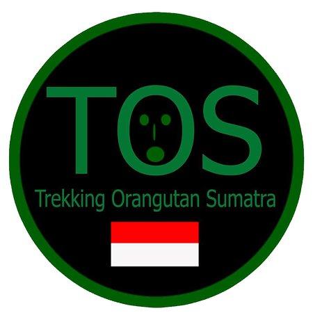 Trekking Orangutan Sumatra