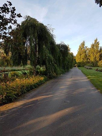 Mjösunds Begravningsplats