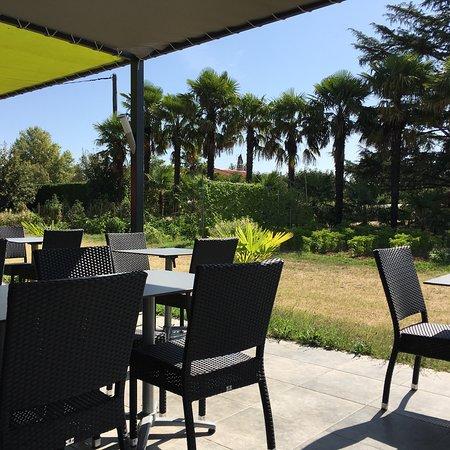 Lescure-d'Albigeois, France: La grande terrasse extérieur avec belle vue palmiers et potager