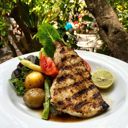 Barefoot Garden Cafe: Fresh grilled fish at lunchtime.