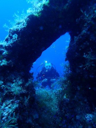 Bubbles Dive Centre: Dom at the rock