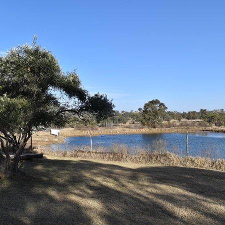 Wyberba, Australien: photo6.jpg