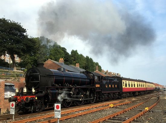 Walk along the rail path from Ruswarp to Whitby and see the steam train passing by.