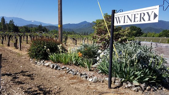 Rosella's Vineyard and Winery