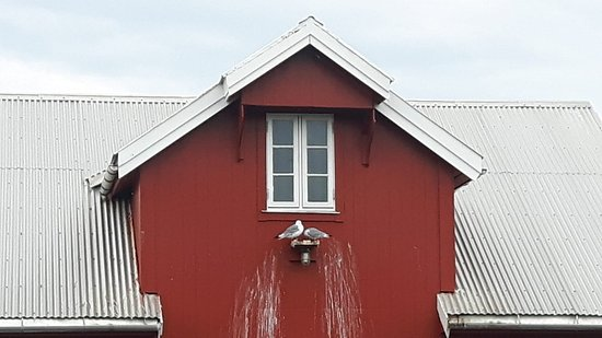 Bud, Νορβηγία: IMG-20180829-WA0091_large.jpg