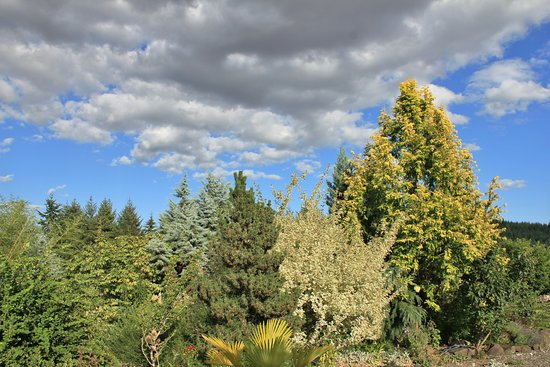 Dancing Oaks Nursery And Gardens The Is Surrounded By Oregon Coast Range Foothills