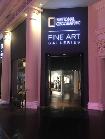 National Geographic Fine Art Gallery