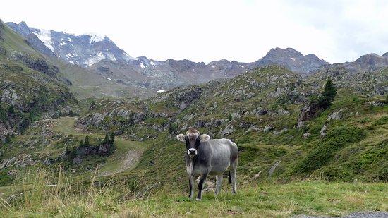 Feichten, Österrike: Kaunertal
