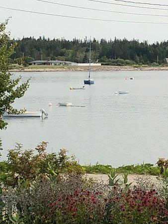 Prospect Harbor, Maine: Prospect Harbor across the street