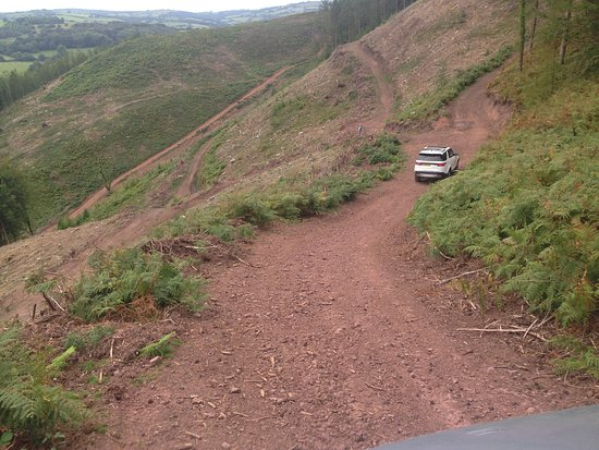Awliscombe, UK: A private track on Exmoor