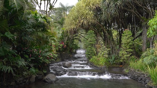 Tabacon Hot Springs: This is the main water way but there are others much better to relax in.
