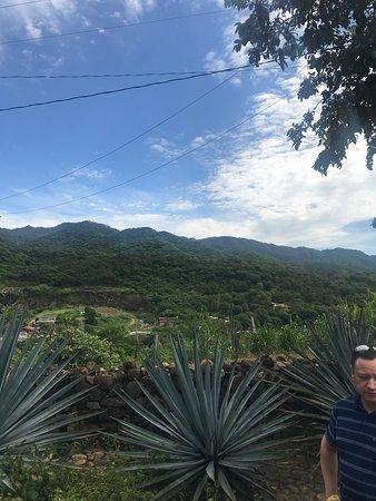 Puerto Vallarta Anniversary Trip