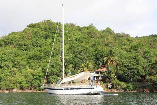 """Les Anses d'Arlet, Μαρτινίκα: Sunny Boat """"privatisation d'un bateau"""""""