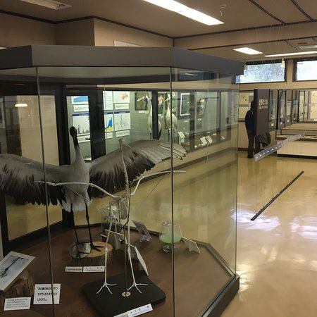 Kushiro City Red-crowned Crane Natural Park: photo2.jpg