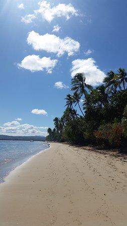 Likuri Island, Figi: beautifl beach