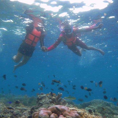 Pescador Island: photo2.jpg