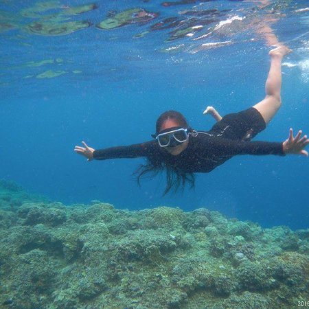 Pescador Island: photo3.jpg