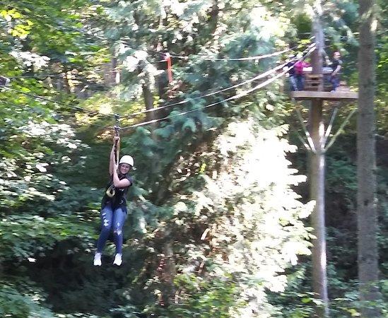 Canopy Tours Northwest-billede
