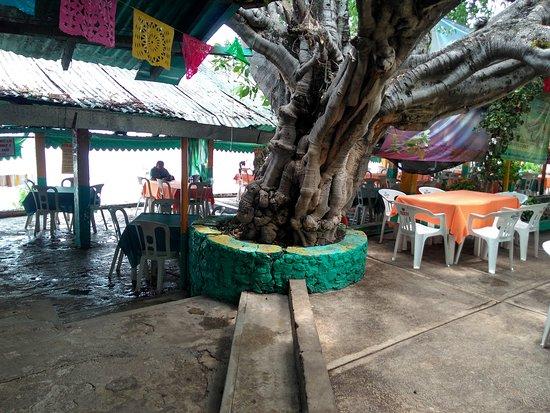 Iguala, Mexico: Justo junto a la laguna