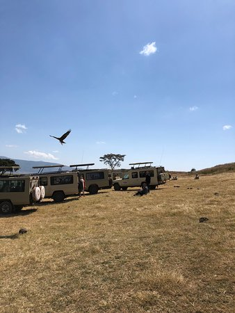 Tanzania Exclusive Journeys