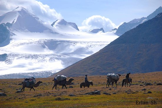 Olgiy, Монголия: Mongolia Altai Mountains, Eagle Hunters Family