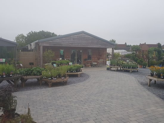 Borrowash, UK: Pip Tree Cafe
