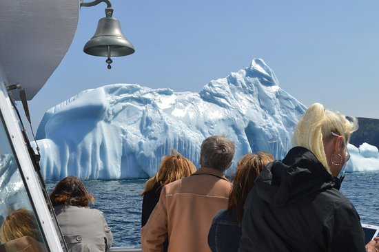Iceberg Quest Ocean Tours: Guests taking in the view of a magnificent 12,000 year old iceberg