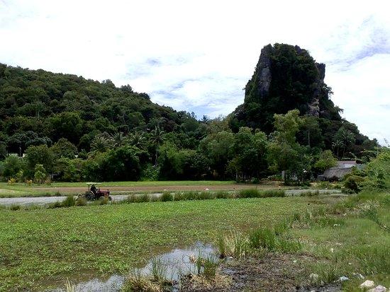 Thanh Van Pagoda (Thach Dong Cave Pagoda)