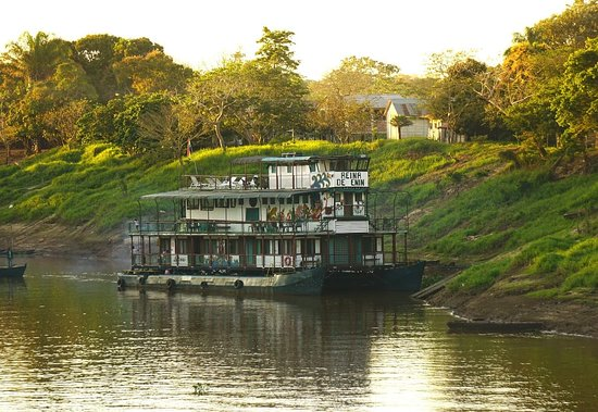 Reina de Enin - Reina Amazon Cruiser