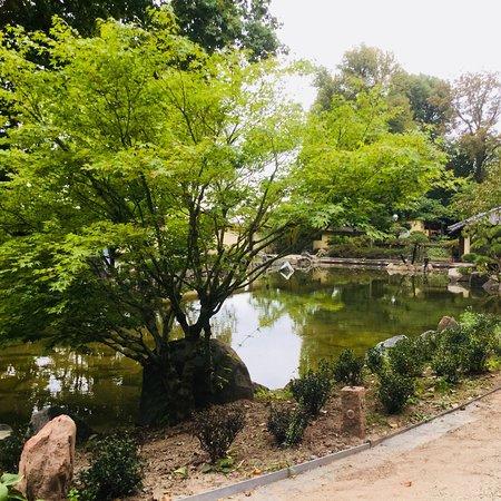 Japanischer Garten Japanese Garden Kaiserslautern Aktuelle