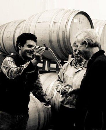 Donelan Family Wines: Barrel samples....