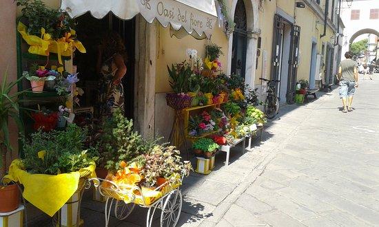 Sarzana, Italien: via mazzini