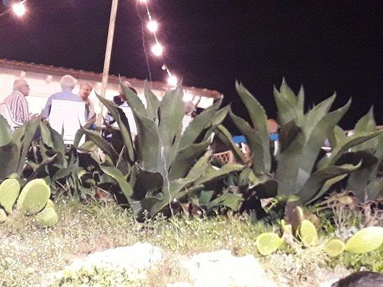 La reggia foto di ristorante la reggia santa maria al bagno tripadvisor - La reggia santa maria al bagno ...