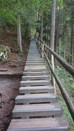 Gollinger Wasserfall: Weg nach oben