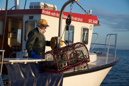 Fiskahummer.nu
