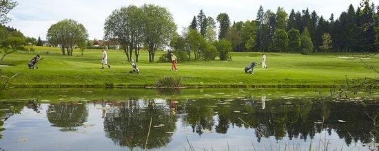 Julbach, Áustria: Das ideale Basislager für einen gelungenen Golfurlaub in der Region Böhnerwald, bayerischer Wald