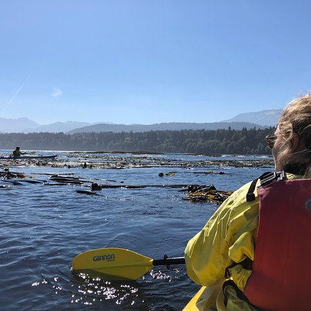 Adventures Through Kayaking Outfitters: photo0.jpg